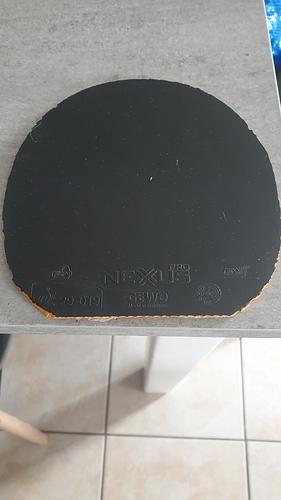 gewo nexxus 38 vendre ventes forum de tennis de table et ping pong. Black Bedroom Furniture Sets. Home Design Ideas